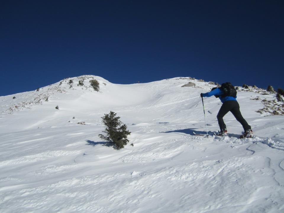 sci alpi.jpg